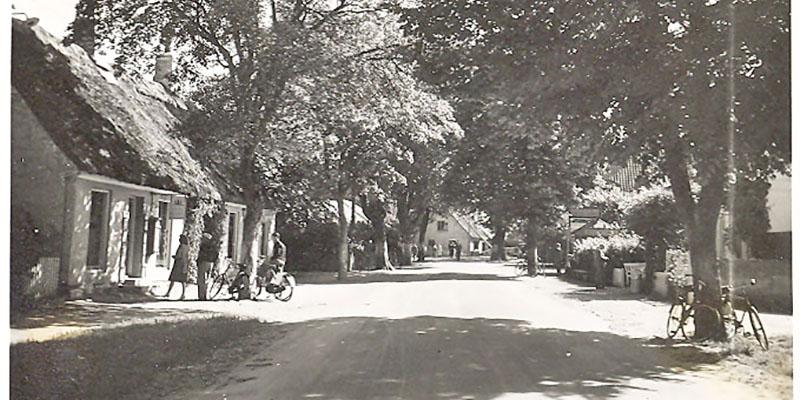 TRÆ hovedgaden 27krabbedamskolen 1953