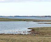 Slut med tørke i Klydesøen