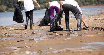 Få støtte til oprydning på stranden