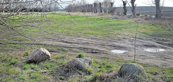 Nej til lerdueskydning