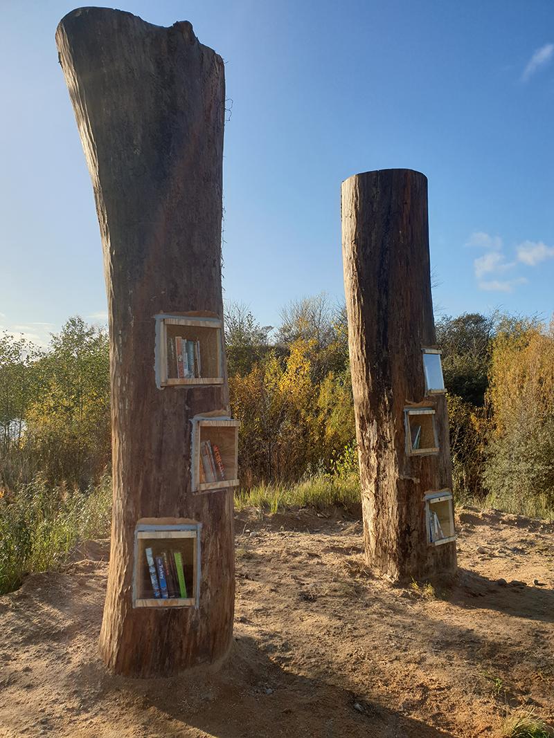 bogtræ_fuld højde